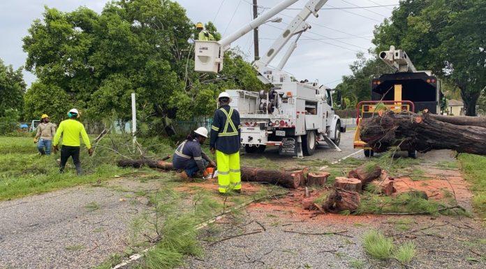 Update: Clean-up begins as Tropical Storm Eta passes