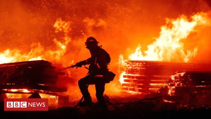 Gender reveal party couple face jail over deadly California wildfire